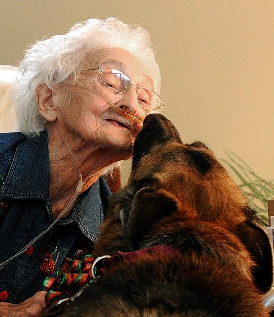Pets Oldlady | Holistic Paws = Waggy Tails
